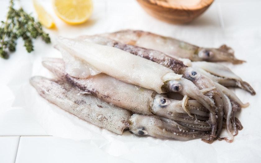 ปลาหมึก