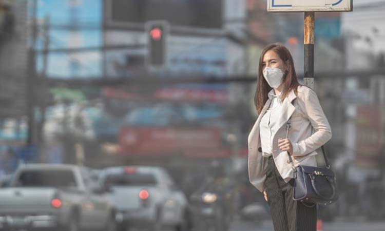 ฝุ่น PM 2.5 เ